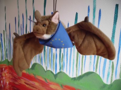 Stofftier Hambi, die Bechsteinfledermaus