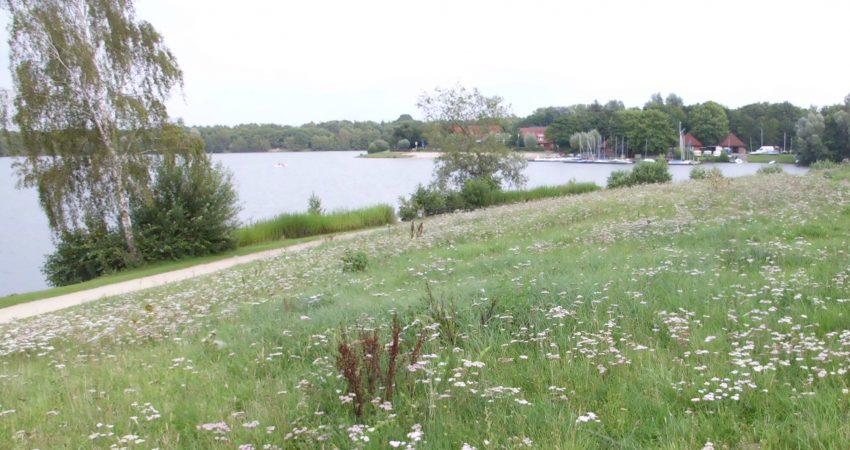 Hügel mit Ufer Drilandsee