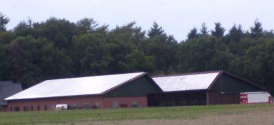 Klimaschutz und Landwirtschaft: Die großen Stalldächer eignen sich gut für die Installation von Photovoltaik-Anlagaen.